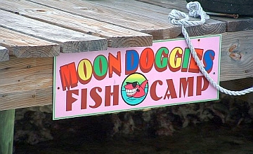 moondoggie fish camp ss